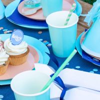 Bluey Party Tableware